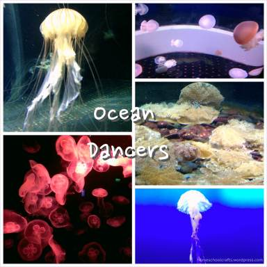 SEA_Aquarium_Sea_Jellies_HomeschoolCrafts
