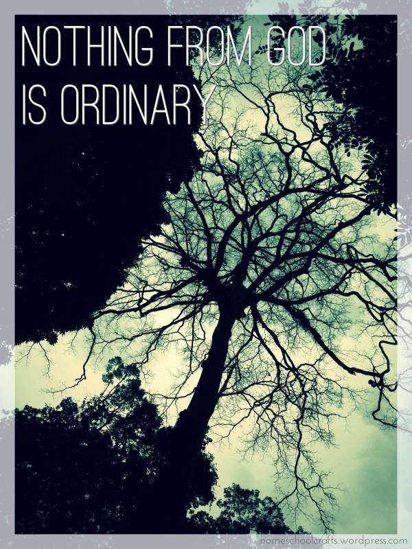 There is nothing from God that is ordinary
