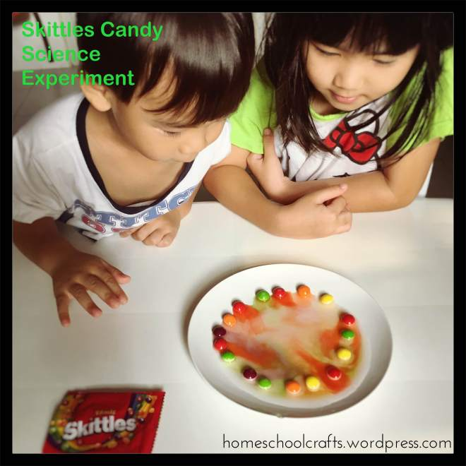Skittles-Candy-Science-Experiment-Homeschool-Crafts